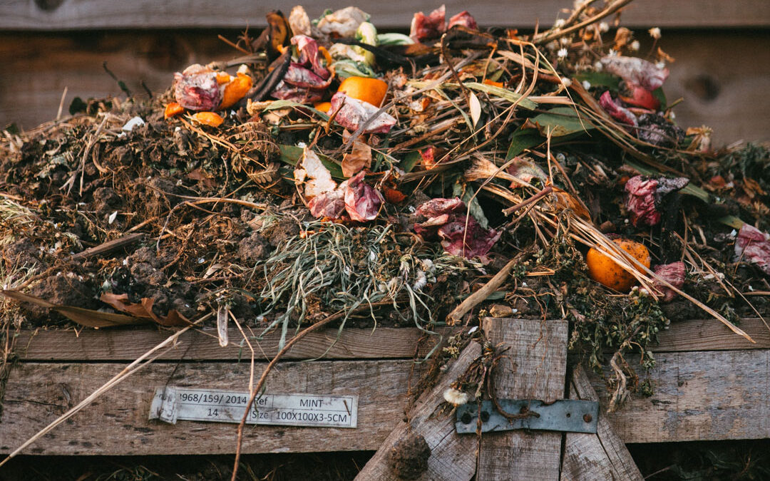 Why Compost Is Amazing For Garden Pest Control