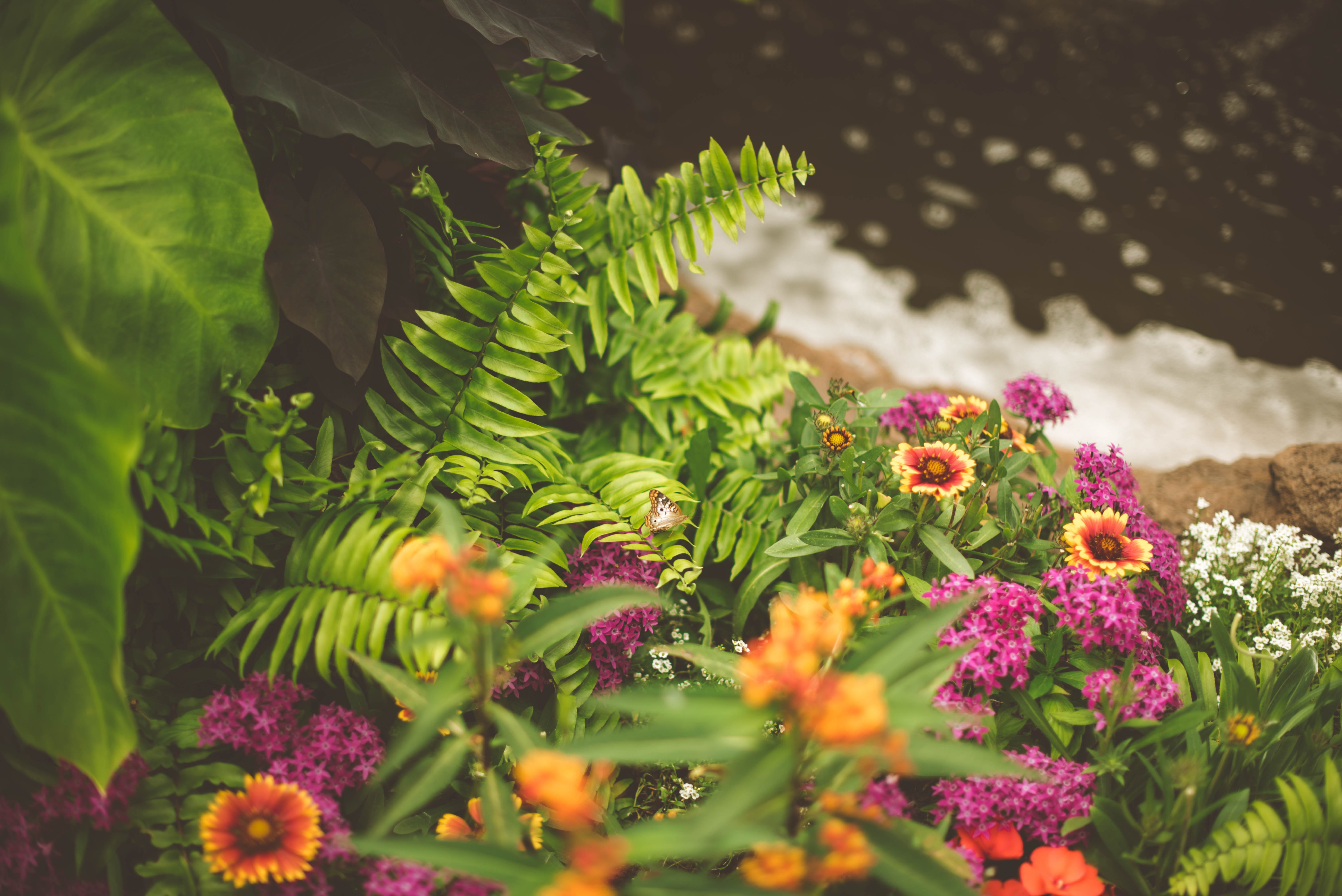 5 Best Soil Amendments For Stunning Gardens and Trees